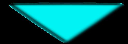 path4160